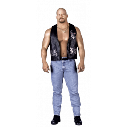 19cde7234 STONE COLD STEVE AUSTIN - Much Media